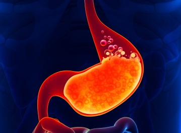 Stomach Acid: Why you absolutely need it. And probably more of it.